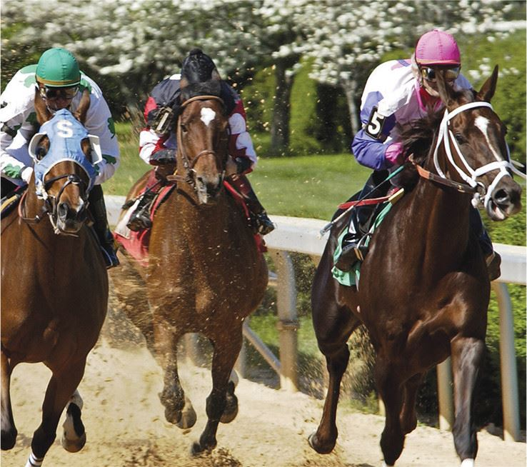 Three jockeys racing horses on a track