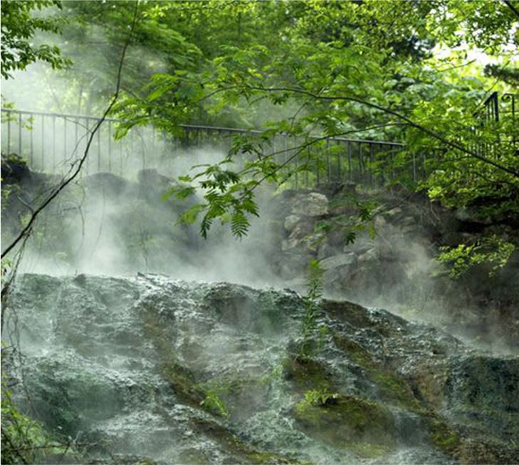 A foggy waterfall in a forest